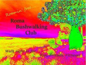 Roma Buswalking Club