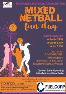 Mixed Netball Fun Day